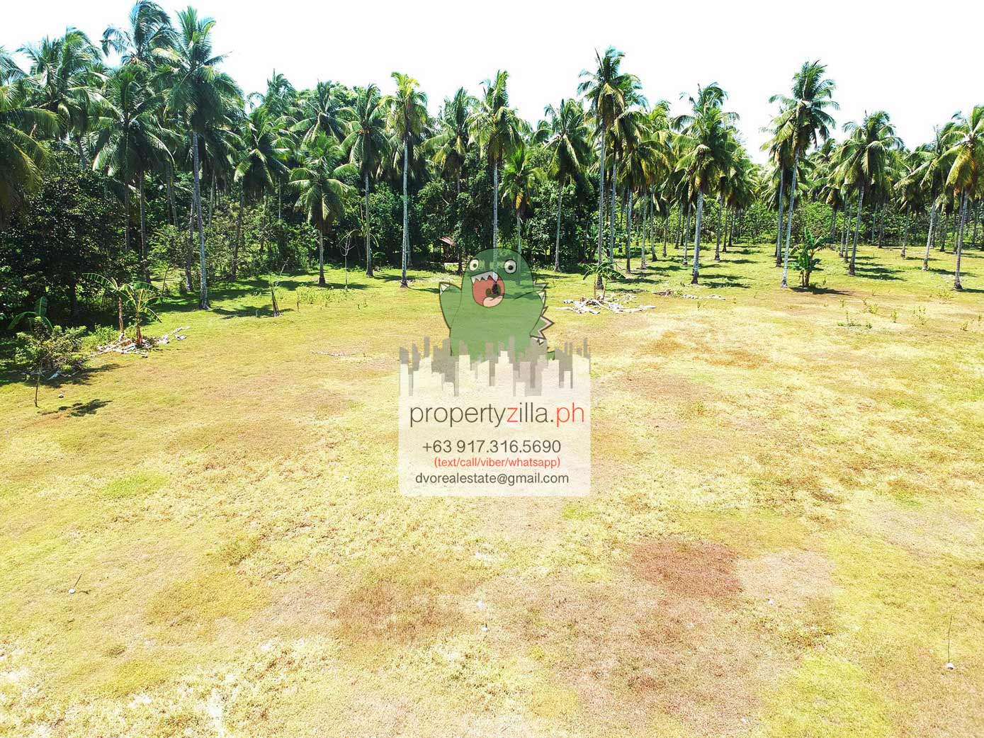 DRGR156 : Babak, Samal Affordable Lots For Sale