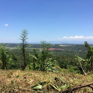 Magtuod 40 Hectares Lot with Overlooking View For Sale
