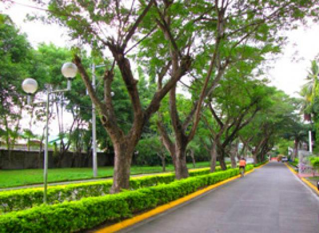 Davao lots for sale