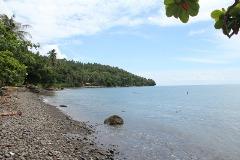 DRE055 : 21,563 sqm Tagpopongan, Samal Beach Front Lot