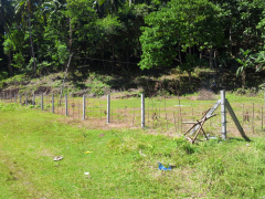 DRE081 : Five(5) Residential Babak Lots, Samal