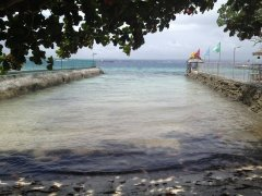 Samal White Sand Beach Front Property For Sale!
