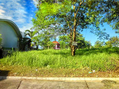 CDMDR435 : 201 sqm. Robinson Highlands Lot, Diversion Road, Davao City