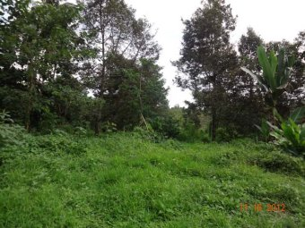 CDMDR499 : 37,199 sqm. Toril Farm Lot, Davao City